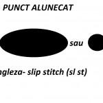 Simboluri diagrame – punctul alunecat